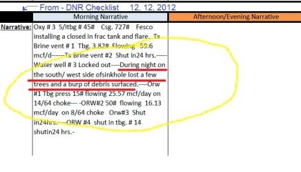 DNR_checklist_12_12