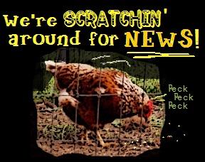 chickenscratch